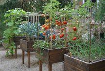 jardines organico