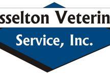 North Dakota Vets Who Practice One or More Modalities in Holistic and Integrative Veterinary / http://www.bestcatanddognutrition.com/roger-biduk/list-of-900-u-s-holistic-integrative-veterinarians/