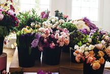 Floral Studio's and Gardens