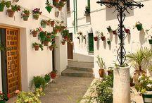 Priego de Córdoba en imágenes