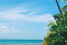 Reisen in Nordamerika & Karibik