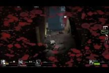 Left 4 Dead 2 (L4D2) / Zombie apocalypse based first person shooter.
