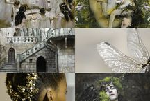 Photography - essay