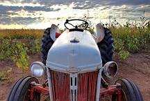 auto: tractor