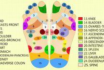 Sluggish Thyroid / Essential oils for Thyroid