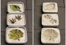 Cement leaves