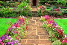 Garden / by Kyla H