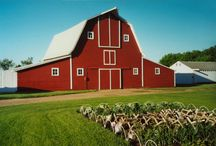 Barns  / by Amy Munson