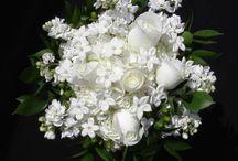 Fiori / Bouquet