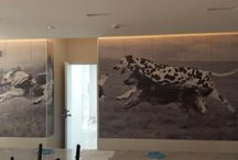 Dogs printing on the wall / before completion, Doggy's Villa / Chiba