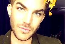 Adam Lambert ❤♕