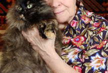 Pets and Elderly People / Pets are the perfect companion for #elderly people who are often isolated socially. / by A-1 Home Care, A-1 Domestic Professional Services