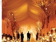 Wedding Ideas / by Trisha Kaegel