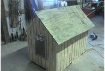 Dog House / Building a Dog House
