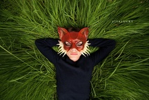 weird but awesome / by Kate T. Parker Photography