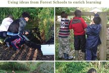 forest school / ideas for forest school activities