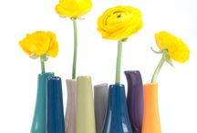 Vases / Beautiful vases to suit any home!