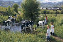 farm élet