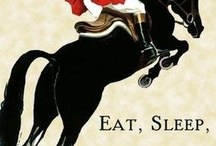 that's all about equestrian