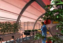 Mars Agriculture