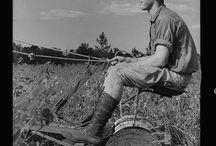 De l'agriculture et des hommes