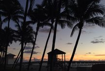 Ft. Lauderdale and South Florida / Travel and Entertainment for South Florida