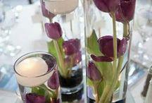 Mariage alex et kop / bleu violet