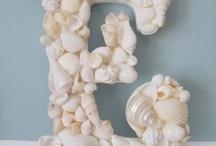 Muscheln und Meer