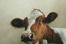 Ya ol' Heiffferr / My cow obsession