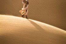 Nature - desert