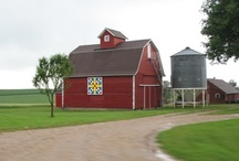 Country Life in Iowa / by Sharon Jessen