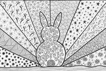króliki / zające