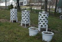 Gardening / How to grow stuff I love