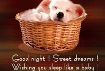 Goodnight My Friends...