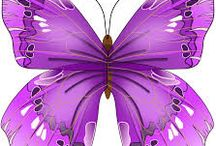 Butterfly Graphics I Love