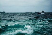 Ocean / by Leontina