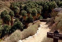 Rancho Mirage Hike & Scenery