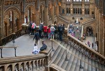 Museos del mundo. / Los museos como gran fuente de información.