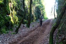 Rutas de senderismo por Cantabria