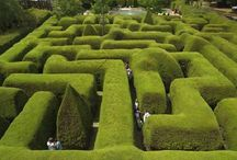 Inspiration for Sorcerer's Maze / Interactive book in which the reader finds themself in a maze and must answer questions correctly to get out.