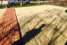 Landscaping / Landscaped areas.