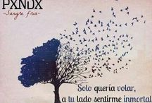 PXNDX -Q-