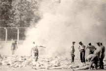 Historia Holocausto