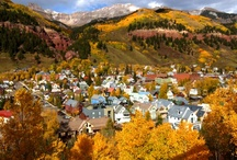 Fall / The Fall foliage in Telluride is something you have to experience and check off your bucketlist! The yellows, oranges and reds will leave you speechless. Don't forget your camera!