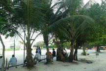Hifaseyha Maidhaan ( park near Artificial Beach in Henveiru ) / Hifaseyha Maidhaan in a park, waste land, vehichles parking lot, and play ground next to Artificial Beach and Diamond Jubilee Carnival...It's in Henveiru