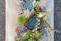 cuadros jardines