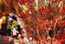 Wedding ideas pot / Ideas and tips for weeding  / by Raffaella B