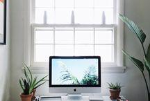 Workstations / Workspace