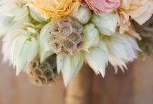 Oh So Floral / Pretty!!! Clusters of flowers I love - My expensive habit... / by Laura Gabriele
