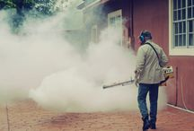 Mosquito sprayings / Are mosquito sprayings good or bad? http://insectcop.net/mosquito-spraying-good-or-bad/